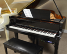 Yamaha DC3 Player Grand