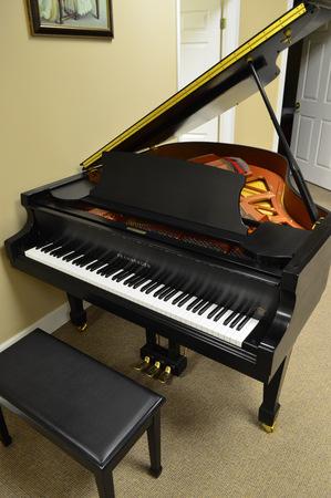 1999 Pramberger Baby Grand Piano