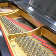 1929 Steinway Model M Grand - Grand Pianos
