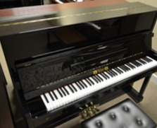 Perzina GP-122 Professional Upright Piano