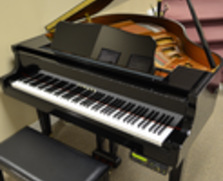 Yamaha DGA1 Grand Piano